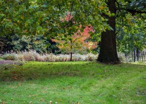 Our visit to Osterley Park, National Trust park