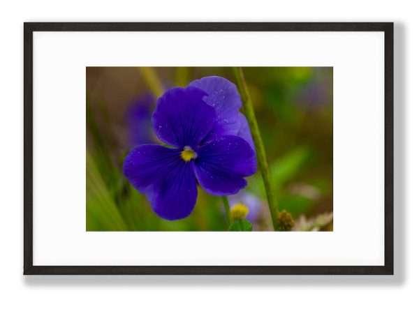 Blue Power Floral Art Print